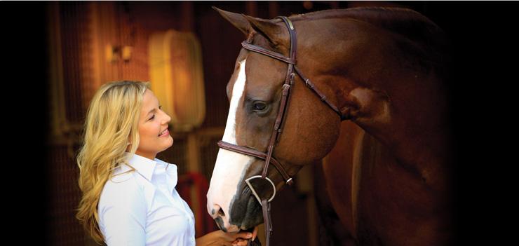 main cta horse Horse
