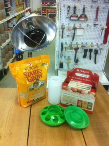 chick starter kit.JPG 224x300 Special Price : Chick Starter Kit