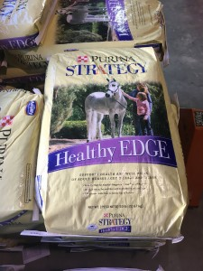 strategy healthy edge e1462457801314 225x300 May 30 : Featured Item of the Week : Healthy Edge
