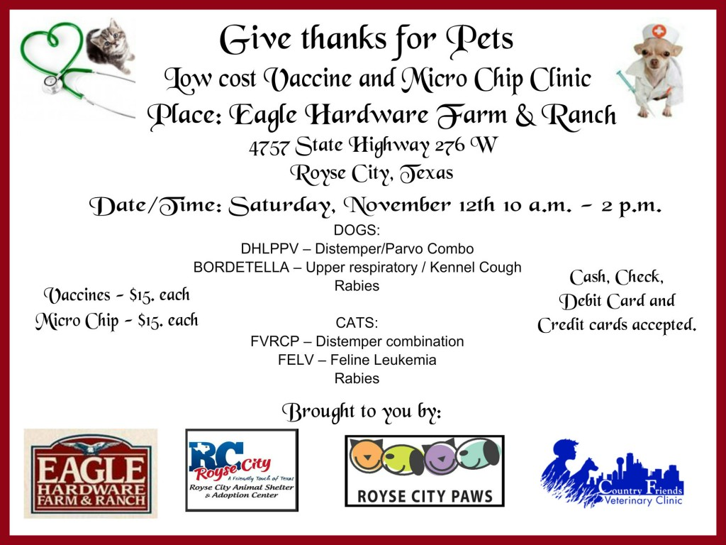 Eagle Hardware Shot Clinic with kitty Nov 1024x768 Furever Thankful Pet Adoption & Shot Clinic Event